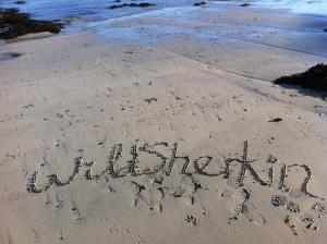 Wild Sherkin header