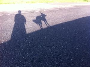 Nellie shadow