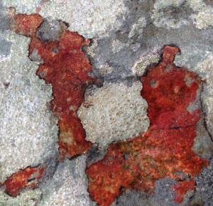 Cropped rock