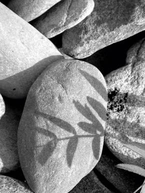 Shadow stone b&W