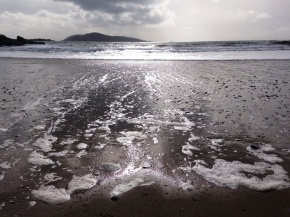 wildsherkin silver strand