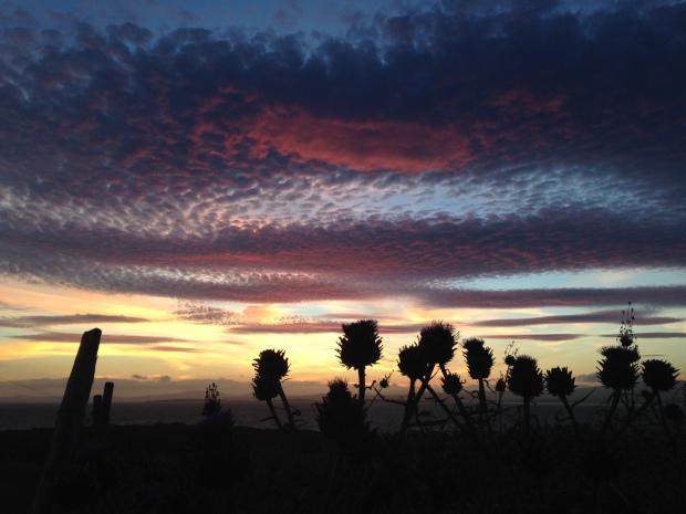 Sherkin sunset