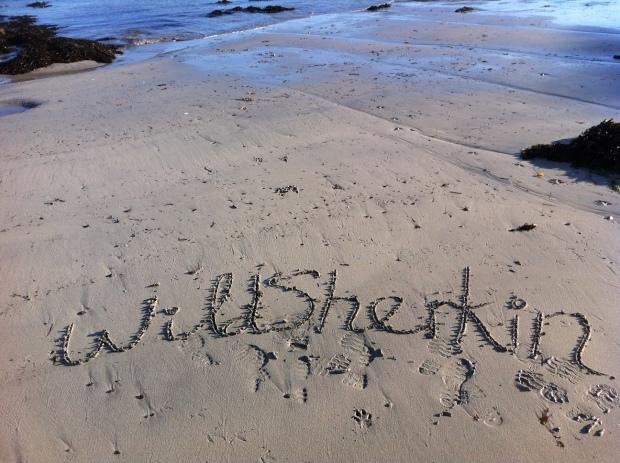 Wildsherkin